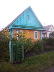 сдам дом в деревне